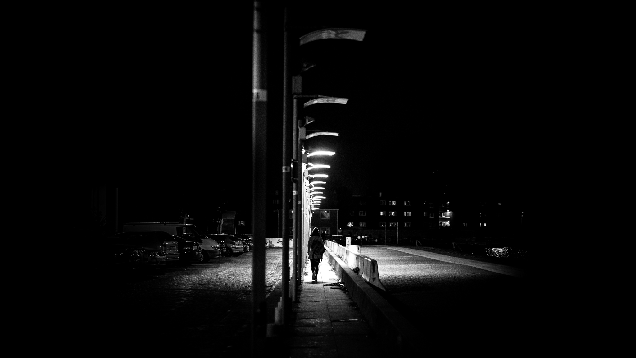 The path - Dublin, Ireland - Black and white street photography